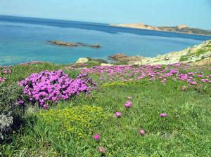 Isola Rossa, Sardenha, Itália. Author and Copyright Marco Ramerini