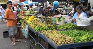 Pernambuco: história colonial, praias e cana-de-açúcar
