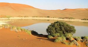Sossusvlei, Deserto do Namibe, Namib-Naukluft, Namíbia. Autor e Copyright Marco Ramerini..