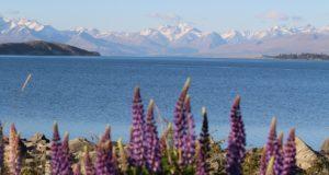 Lake Tekapo, Nova Zelândia. Autor e Copyright Marco Ramerini