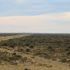 A paisagem semidesértica da Península Valdés, Argentina. Autor e Copyright Marco Ramerini