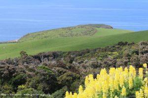 Catlins, Nova Zelândia. Autor e Copyright Marco Ramerini