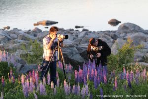 Fotógrafos, Lake Tekapo, Nova Zelândia. Autor e Copyright Marco Ramerini