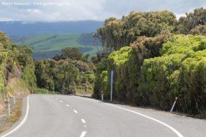Estrada ao longo dos Catlins, Nova Zelândia. Autor e Copyright Marco Ramerini
