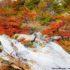 Chorrillo del Salto, El Chalten, Parque Nacional Los Glaciares, Argentina. Autor e Copyright Marco Ramerini
