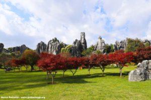 Floresta de pedra, Shilin, Yunnan, China. Autor e Copyright Marco Ramerini