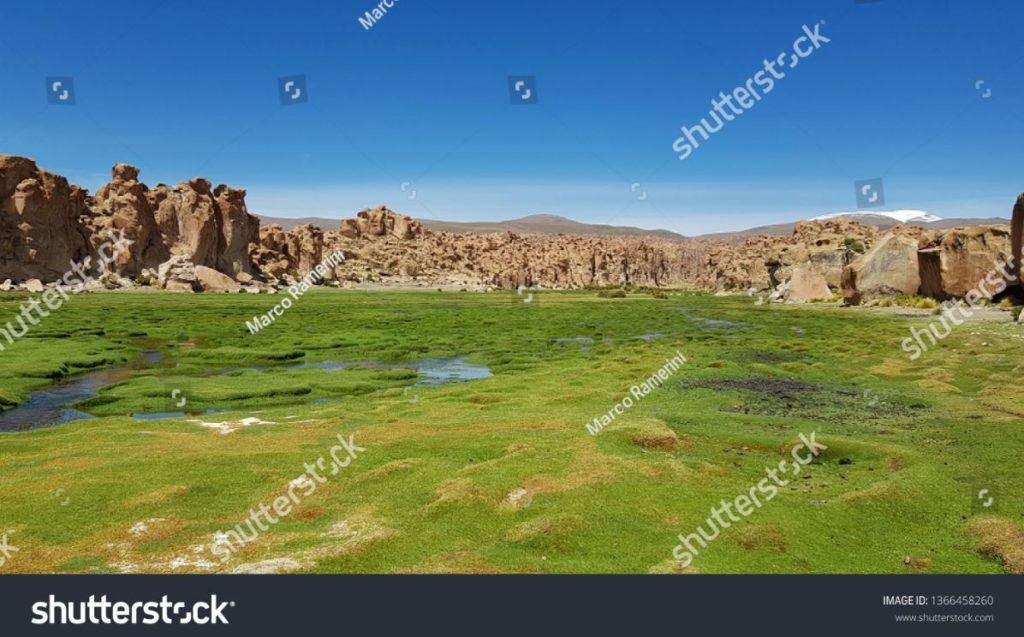 Laguna Negra, Bolívia. Autor e Copyright Marco Ramerini