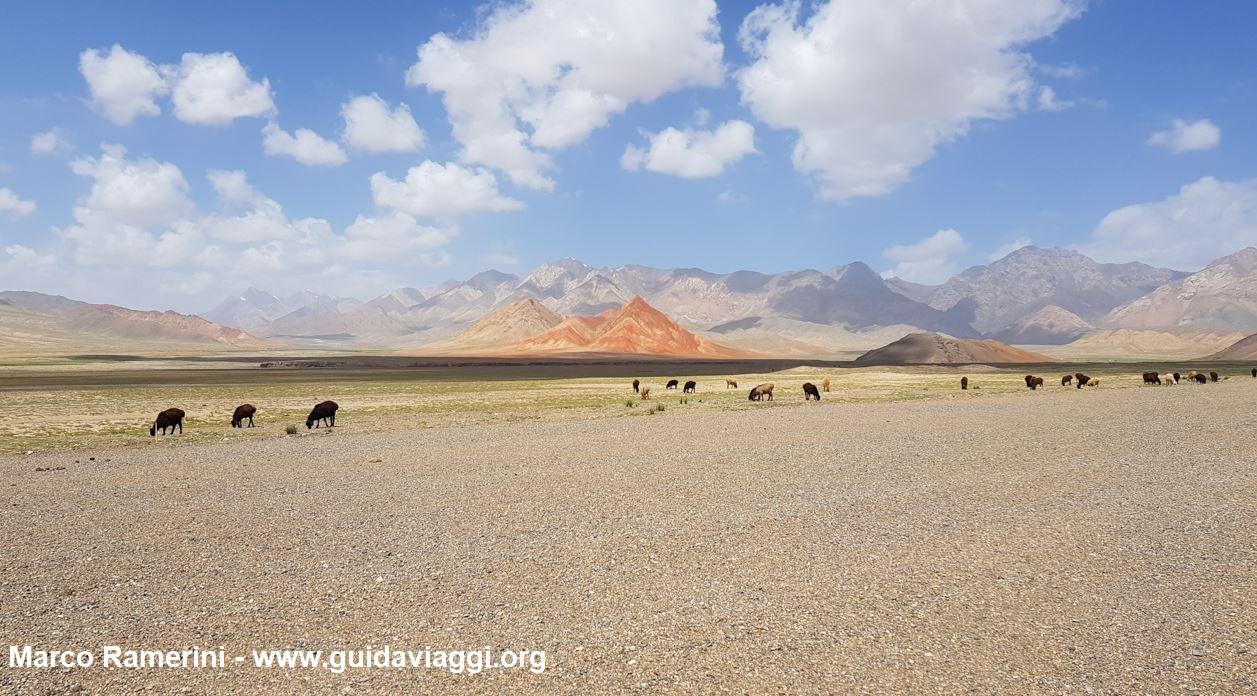 Animais pastando após a fronteira entre o Quirguistão e a China. Autor e Copyright Marco Ramerini