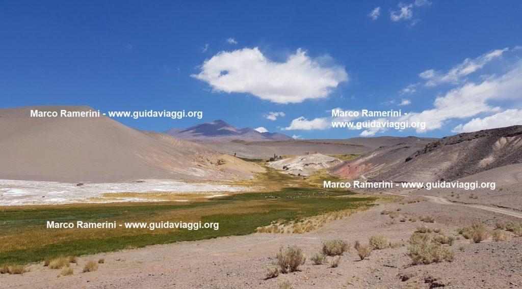 Um oásis verde inesperado, Puna, Argentina. Autor e direitos autorais Marco Ramerini