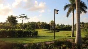 Gold Course, Nassau, New Providence, Bahamas. Autor e Copyright Marco Ramerini,
