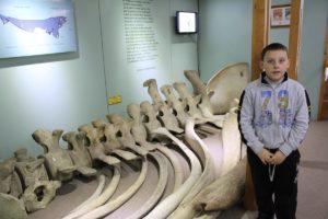 Andrea, Museu Maggiorino Borgatello, Punta Arenas, Chile. Autor e Copyright Marco Ramerini